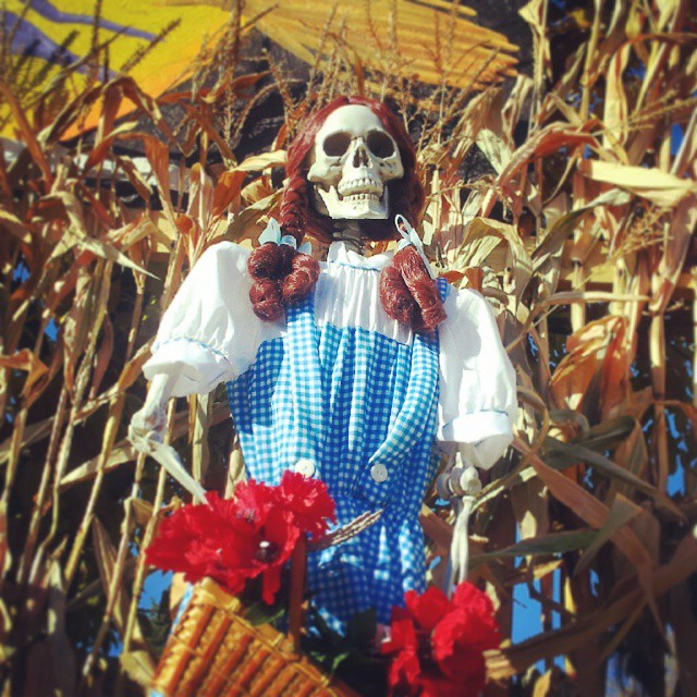 Skeleton Dorothy is part of the Wizard of Oz Halloween display on Why 167 near Holy Hill in Wisconsin
